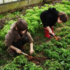 bio-boerderij De Wriemeling - Herent
